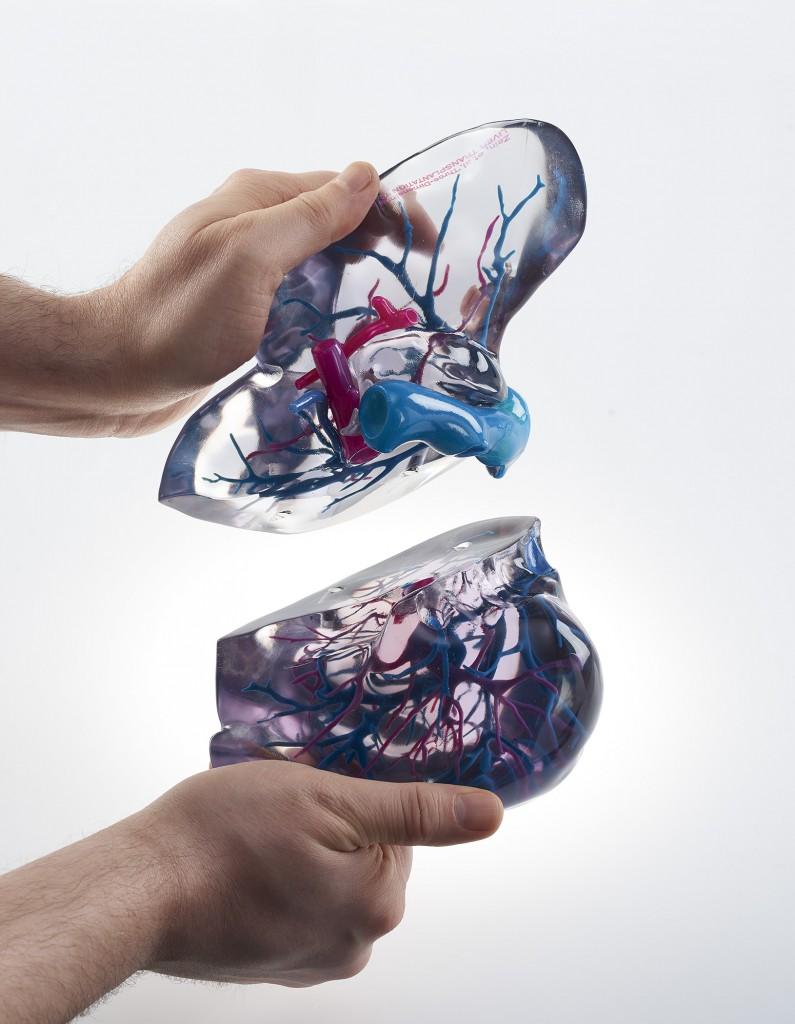 J8 Series 3D Printed Liver